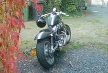 Motorcycle HD sportster Buell / Harley Davidson Sportster with a Buell  Engine