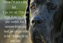 Dogs<3
