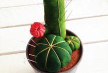cactus chills