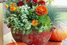 Flower Container Ideas / Plant containers spilling with color and fragrance. Beautify your porch, apartment, or even your mailbox!