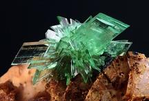 Rocks & Gems / by Shar Lynn
