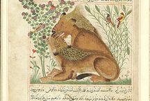 Kitab-el Manafi el-Hayavan defterinden