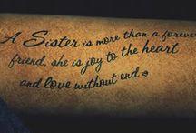Tattoos / by Nicole Belcher