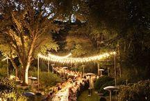 Wedding Plans / by Shantel Adams