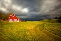 Farm Living / by Jessica Meinardus
