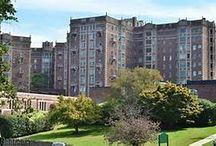 Condo Rosa Condominiums / Alden Park was the inspiration
