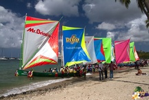 inspiration-Caribbean / by Madaboy Theobald
