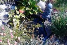Tuin nr.1