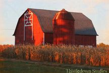 The Love of Barns / Barns / by Janice Hutchinson