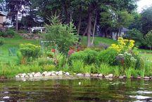 Lakeshore Landscaping
