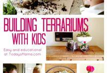 Terrarium  / by Jenna Barnes