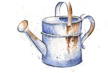 watering can, potters and other