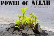 THE POWER OF ALLAH ... ALLAHU AKBAR
