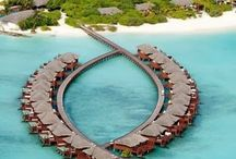 TRAVEL: MALDIVES