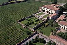 TASTE THE WINE / I viticoltori e le aziende agricole protagoniste dei Salotti del Gusto dell'Alta Badia a San Cassiano dal 22 al 24 giugno 2013!