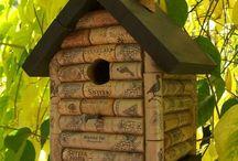 casa de passarinho0