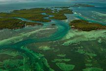Florida Keys Nature and Habitats