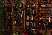 Personal Libraries / Home / individual libraries and reading spaces that I admire.