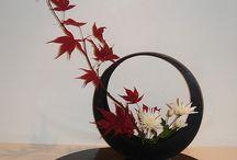 ikebana bonsai