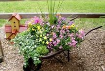 flowers planters / by Diane Dunn