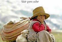 Niños andinos