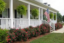 Landscaping ideas / by Lydia Reichelt
