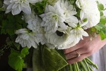 Green & White / For the classic and traditional bride. Soft hues of green, cream and white all adding to the romantic atmosphere of the wedding. Clean, fresh and pure.