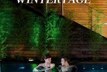 Winter ❄️ Wonderland / Travel Inspiration