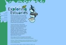 Estuarine Education