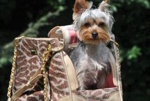 Dog Carriers with Style / Go out & about in a plastic cage?!  Not our dogs!  A collection of the most stylish and fab dog carriers out there.