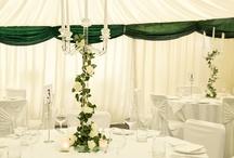 Beautiful Receptions / Wedding Receptions