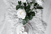 Flowers / 0