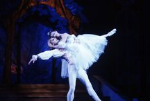 Toe Shoes and Tutus. Ahh Yes, The Ballet! / The Nutcracker, Gieselle, Swan Lake, and more! / by Step Outside the Jewelry Box