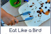 Ideas for MFW K: Quail (Birds)