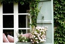 Cottage / by Heather Peninger