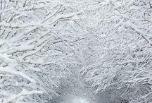 Winter /  Invierno / Parajes que dan frío