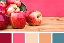 palette colori sito