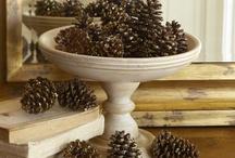 A Plethora of Pinecones