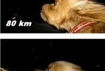 OMGosh... LOL!!! / by B A