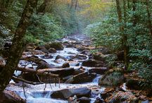 Great Smoky Mountains / One of my favorite vacation spots. There is so much to see and do in this beautiful part of the country. / by Janie Qualls
