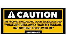 follow quran and hadith