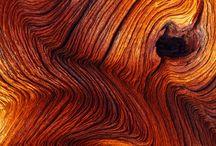 Holz - Rinde - Textur