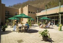 Law School Courtyard / The two-story Main Building surrounds an open courtyard, in which ASL has placed movable patio tables, chairs, and plants.  ASL uses the space for classroom discussions, student parties, cookouts, the Graduation Celebration, and for other special events.  Local residents often use it for weddings. / by Appalachian School of Law