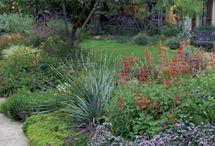 jardinerako loreak