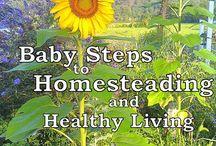 Homesteading / by Whitney Humphrey
