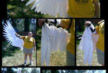 jelmez-madár