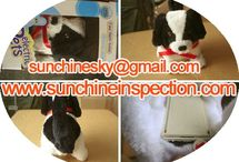 Electric-plush quality inspection