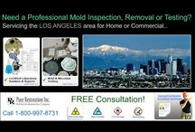 Los Angeles - Mold Inspection & Testing / Pure provides professional Mold Inspections and Mold Testing Services throughout the Los Angeles areas. Call 1-800-997-8731for FREE consultation!