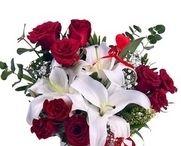 Kastamonu çiçek siparişi / Artık Kastamonu çiçek siparişi vermeniz çok kolay ve hızlı. http://www.cicekvitrini.com/cicekler/kastamonu-cicek-siparisi