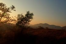 Sunrise / #Sunrise Around The World